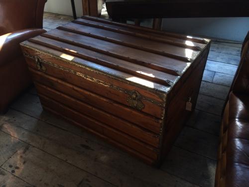 Camphor wood Trunk