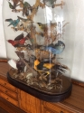 Taxidermy Birds of Paradise - picture 3
