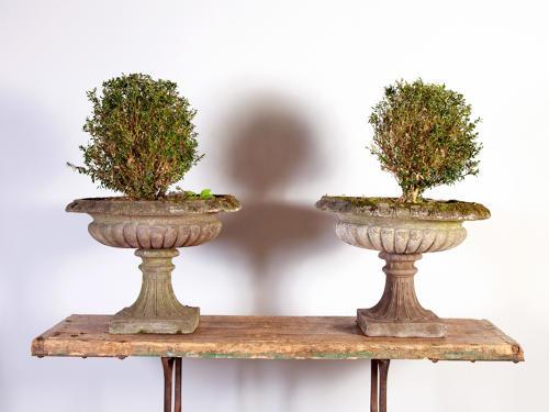 Pair of shallow Kylix Urns